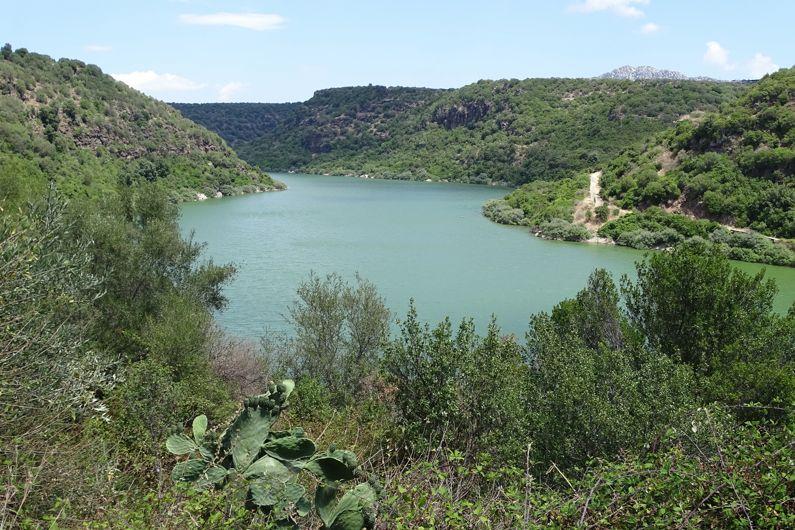 Cosa visitare vicino ad Atzara   I luoghi più belli nei dintorni